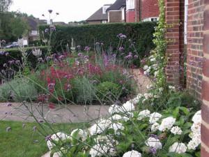 Planting Design - Front Garden - Hampstead Garden Suburb