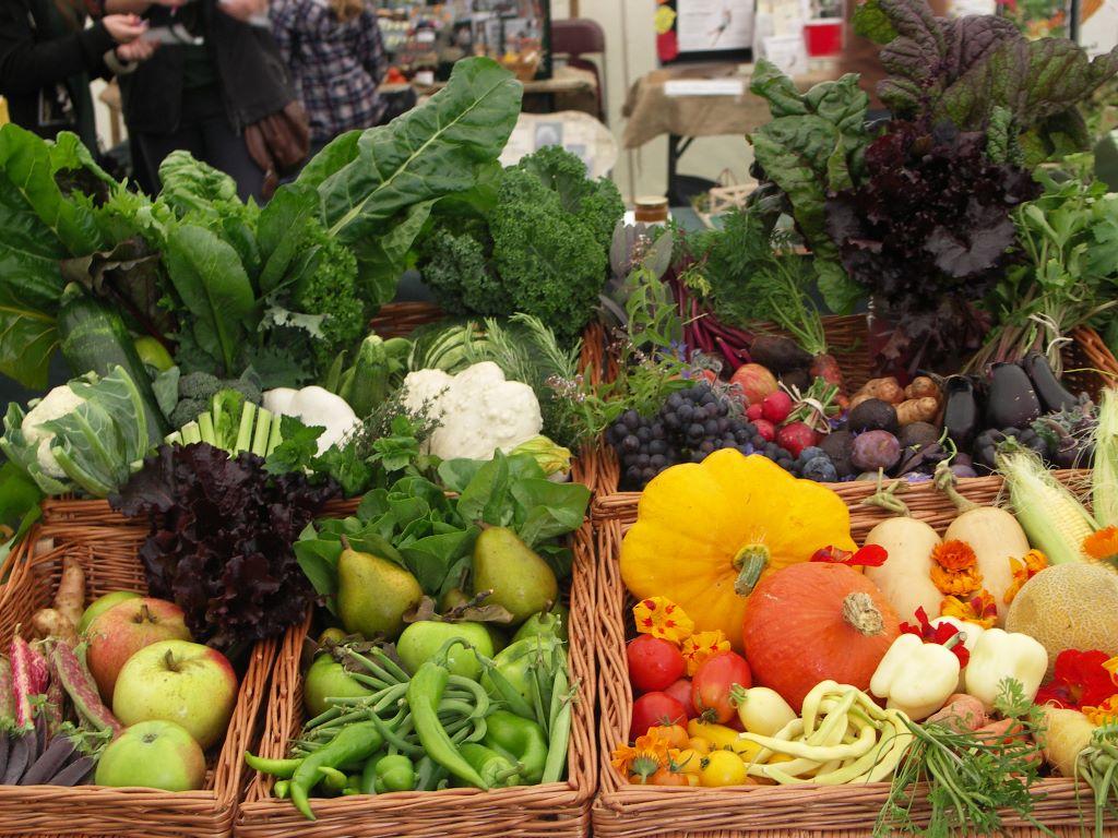 Vegetable gardens leaf acre for Fruit and vegetable garden