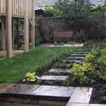 Herb Lawn - new plants will spread to make a carpet.