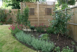Cedar screens partly obscure the shed.