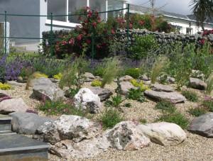 Rock and Gravel Garden