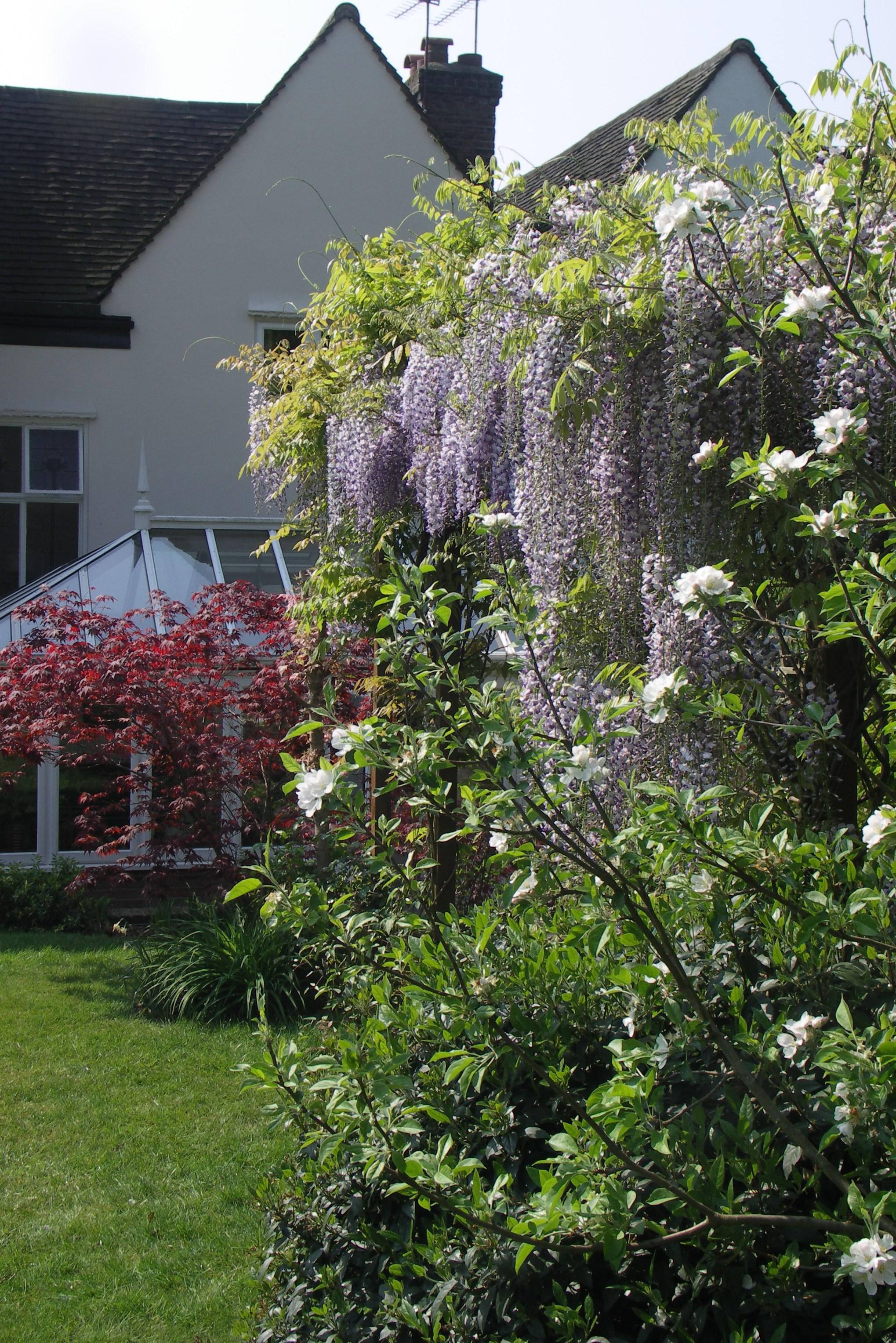 Garden Design North London Home Counties Kerry Ireland