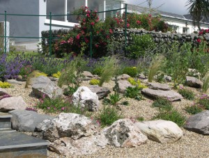 Rock and Gravel Garden
