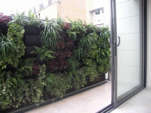 Planting in progress, shows troughs of living wall