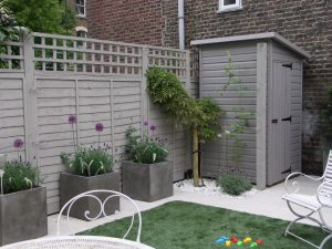 Patio garden with small wisteria and painted sheds