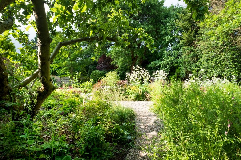 Leaf and acre garden and landscape design in North London
